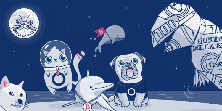 Sau Doge, 'coin động vật' trở thành trào lưu nguy hiểm